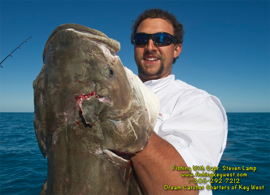 Key west angler catches 64lb cobia fishing with dream for Fish monster key west