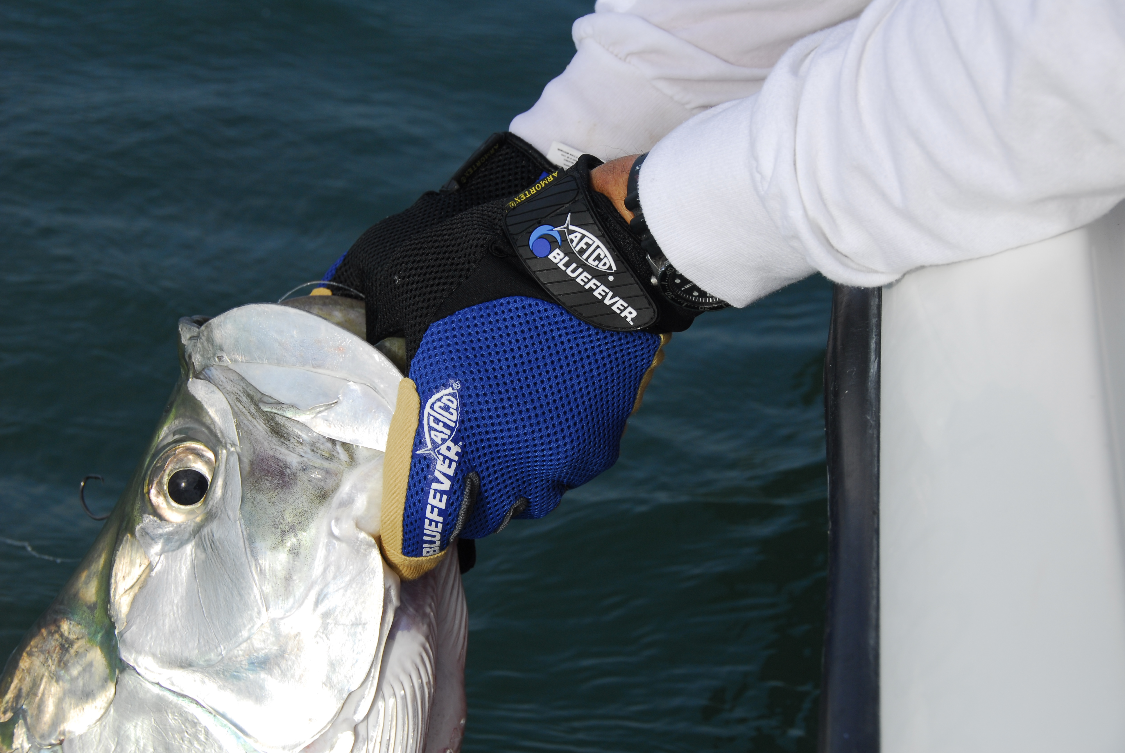 Properly release a tarpon key west fishing report for Fish handling gloves