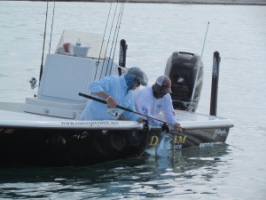Tarpon Key West Release