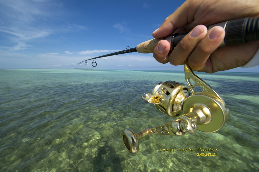 Key west fishing report key west fishing report for Key west flats fishing