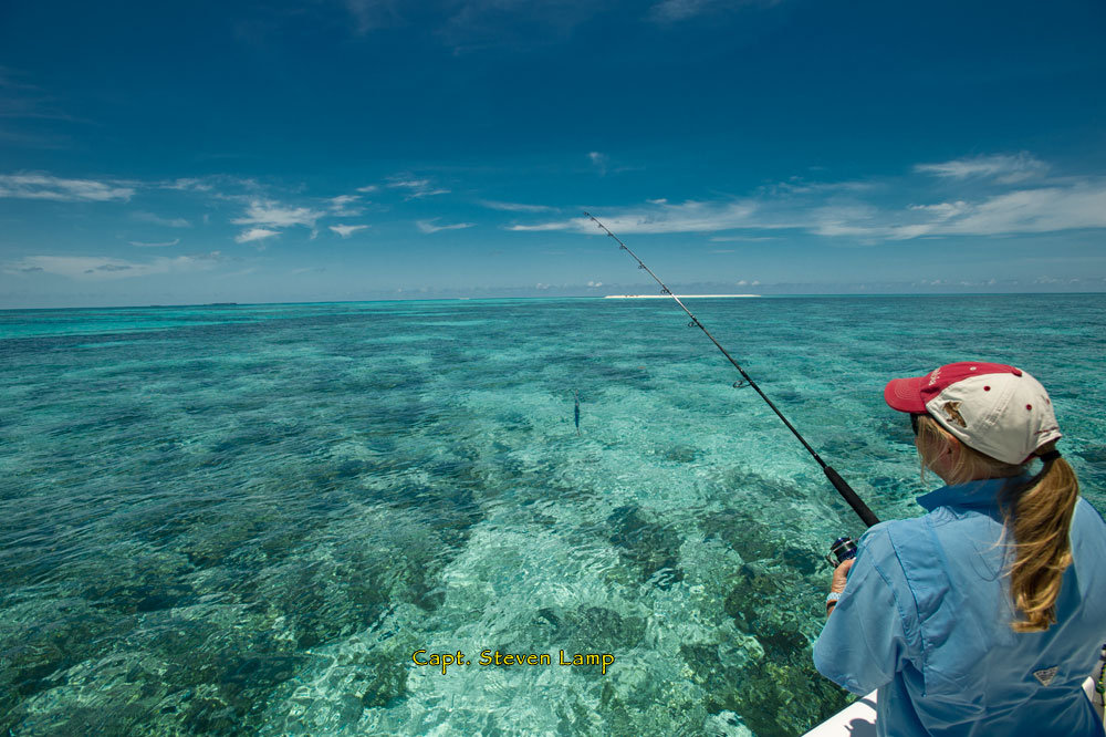key west fishing dry tortugas key west fishing report
