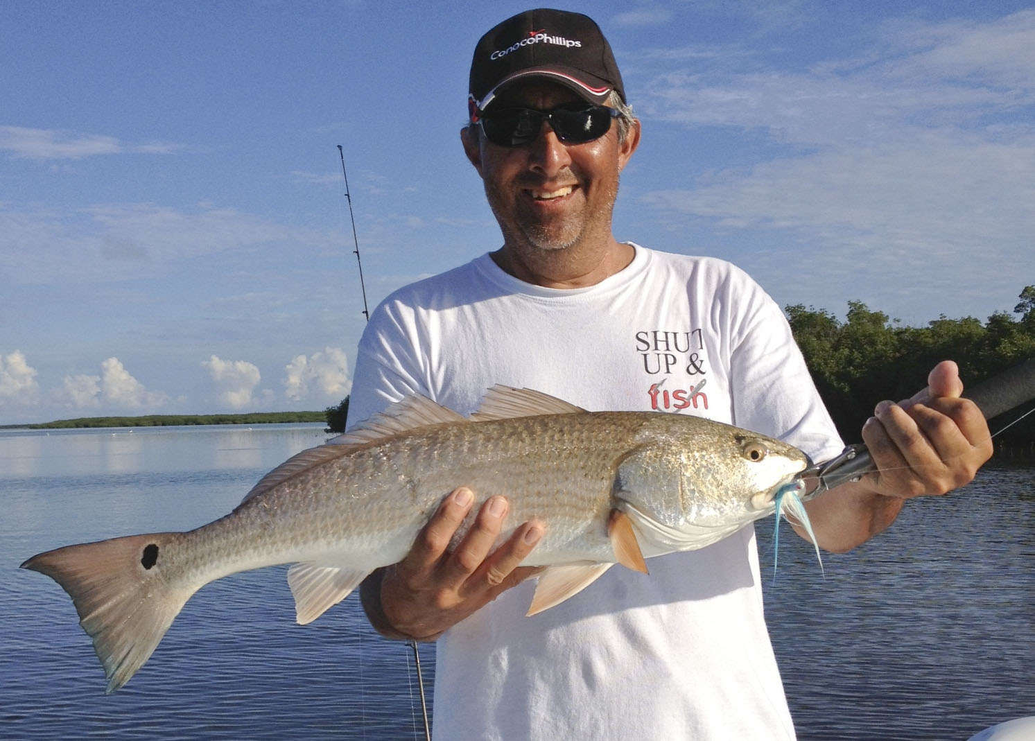Redfish in key west key west fishing report for Red fish pictures