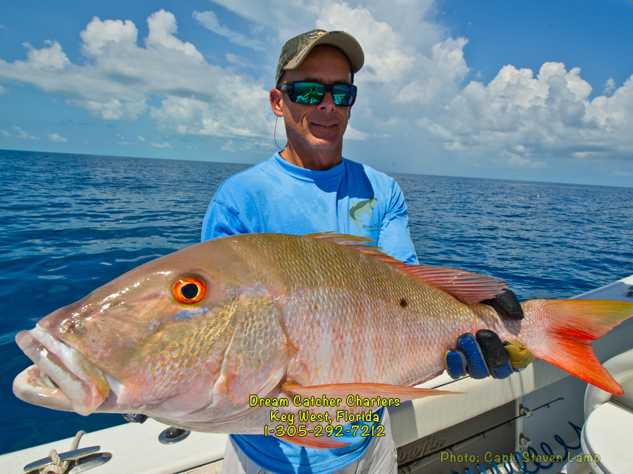 Image gallery mutton snapper for Snapper fish florida