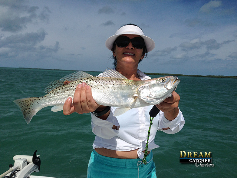A Backcountry November Key West Fishing Report