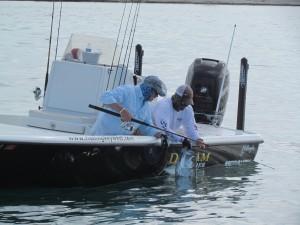 Tarpon Key West Release