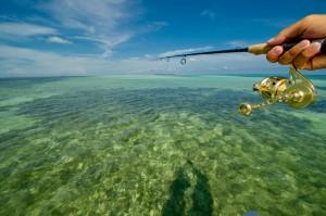 Flats Fishing Rod and Horizon