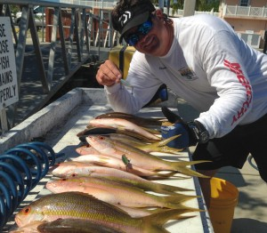 Yellowtail snappers and capt. steven lamp