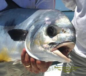permit Key West