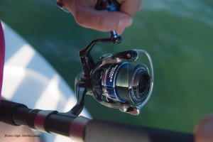 Daiwa Saltiga Fishing Reel