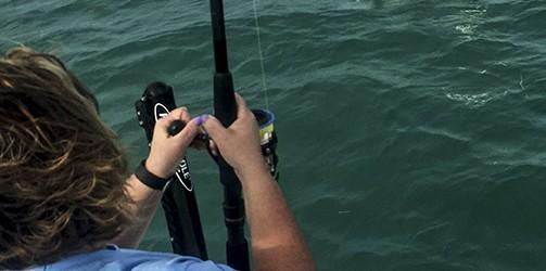 Key West fishing for tarpon