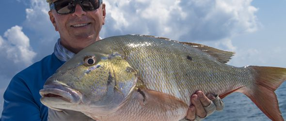 Mutton snapper caught in Key West