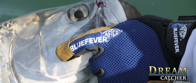 Aftco Gloves Blue Feaver tarpon Release