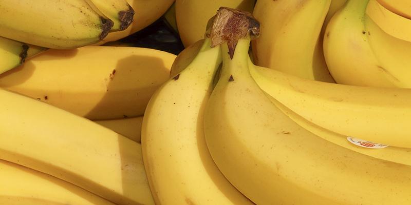 bananas-bad-luck-fishing