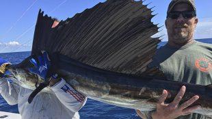 Sailfish Aftco Deep sea fishing Key West