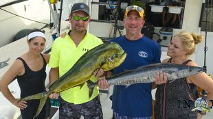 wahoo, dolphin, mahi, fishing charter
