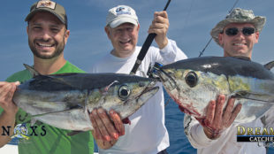 blackfin tuna key west anglers fishermen