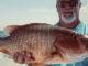reef fishing report