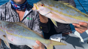 key west august fishing report